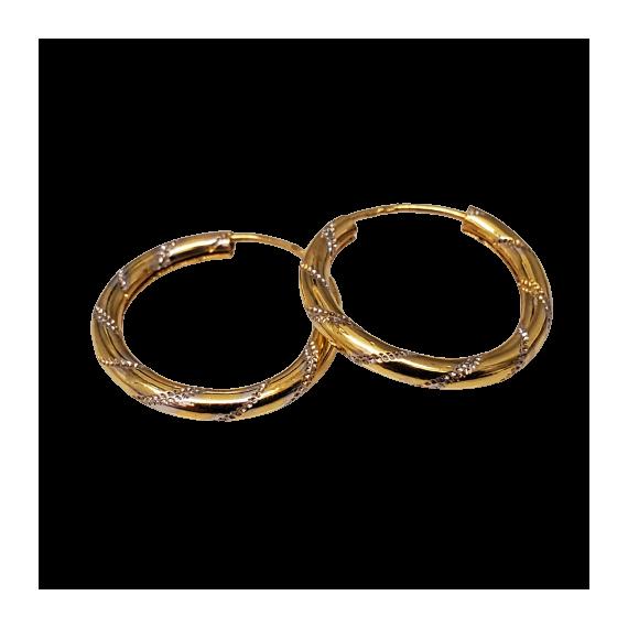 Bicolor Gold Earrings